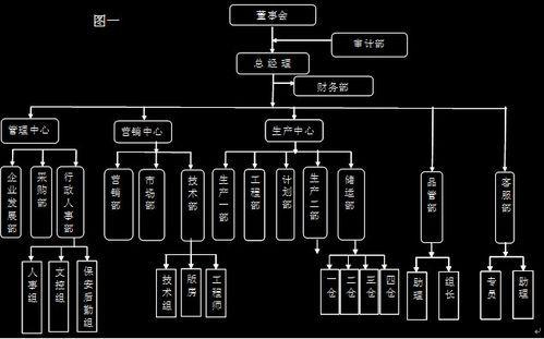 组织架构类型有哪些?