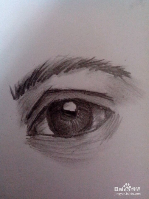 眼睛的素描快速绘画图片