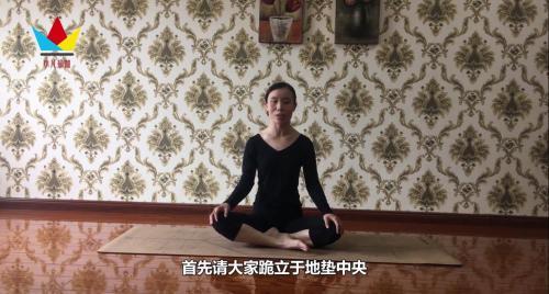 瑜伽猫动态式怎么做?图片