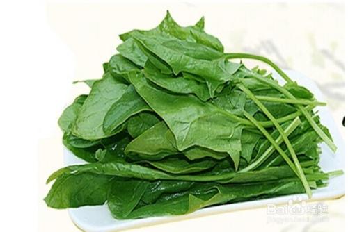 怎么挑新鲜蔬菜――怎么挑菠菜