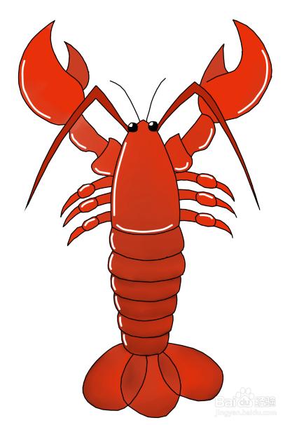 的歌_如何画一个龙虾