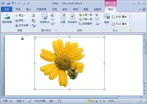 word 2010教程:去除图片背景小技巧