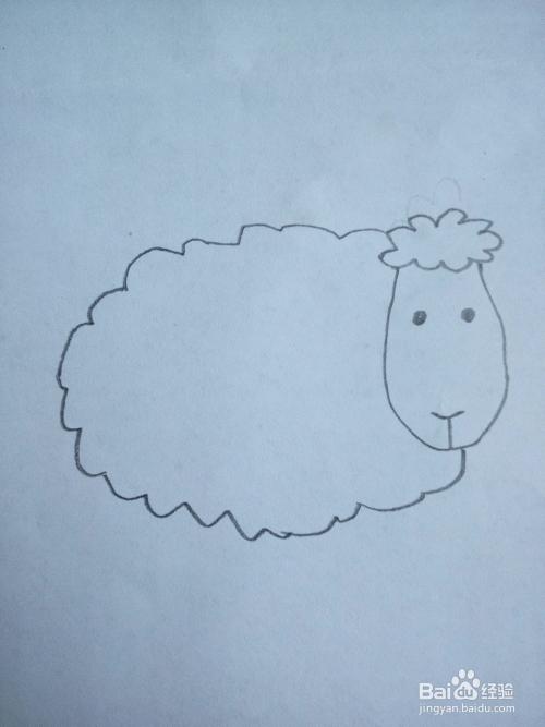 如何简笔画一只可爱的绵羊?图片