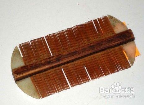 头发长虱子的处理方法图片