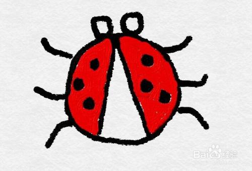 怎么画一只七星瓢虫的简笔画?