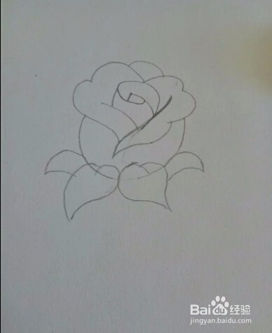 花朵画完开始画叶子. 7 花朵和叶子画好后画茎,这样才是一枝玫瑰.图片