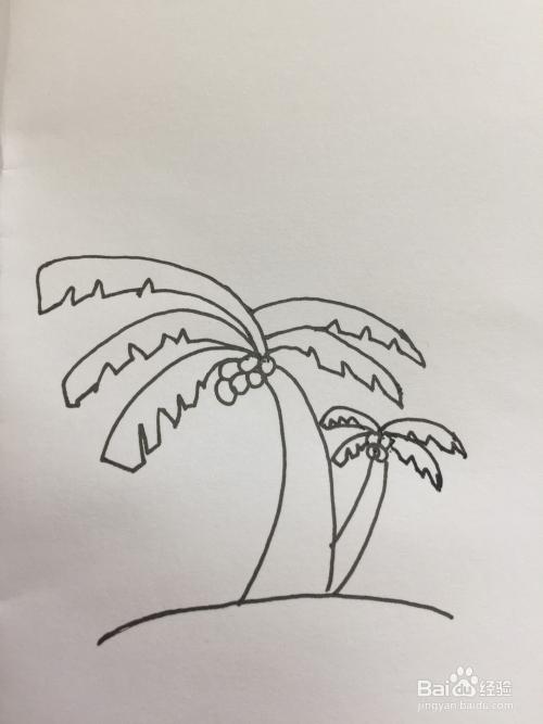 椰子树的简笔画图片