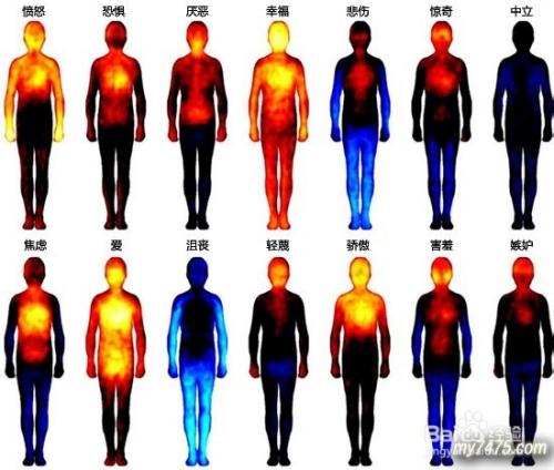 亚洲人体热�_com 方法/步骤 1 愤怒 所有情绪中最强烈的一种,人体上下半身的温度