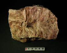 The geological museum collections of pictures China talc