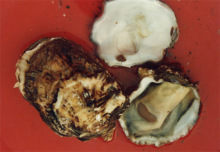 Oyster (Figure 5)