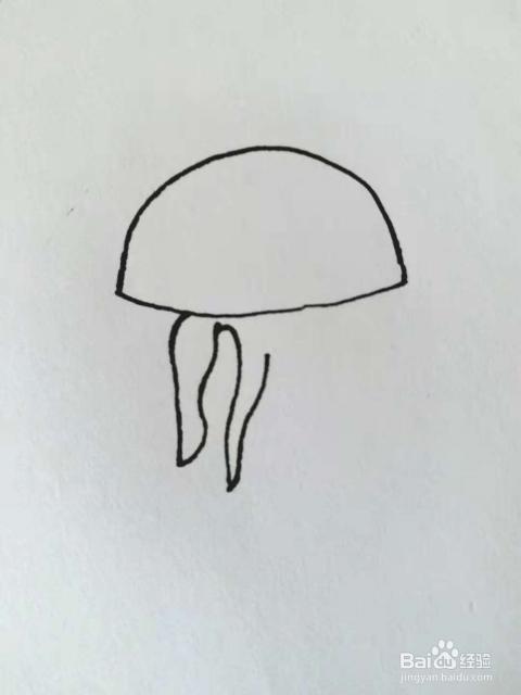 水母的简笔画法1