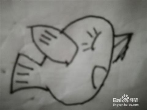 怎么样用简笔画画小小飞鸟