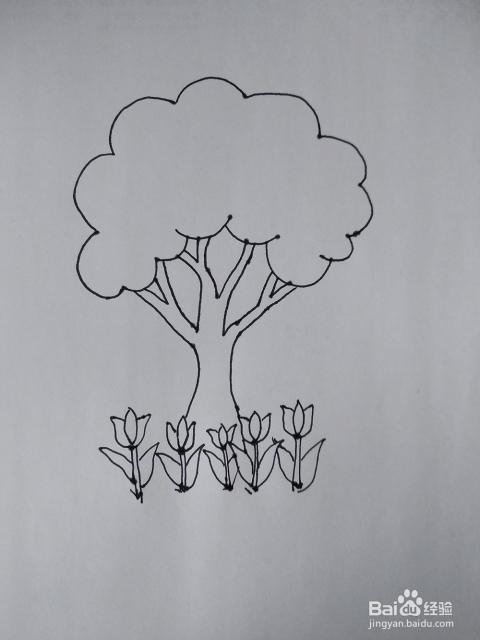 简笔画怎么画一个茂盛的大树和小郁金香花