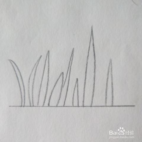 简单水草花教程