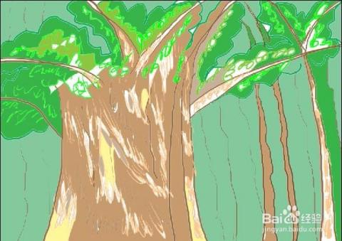 简笔画画法 一棵大树画出丛林