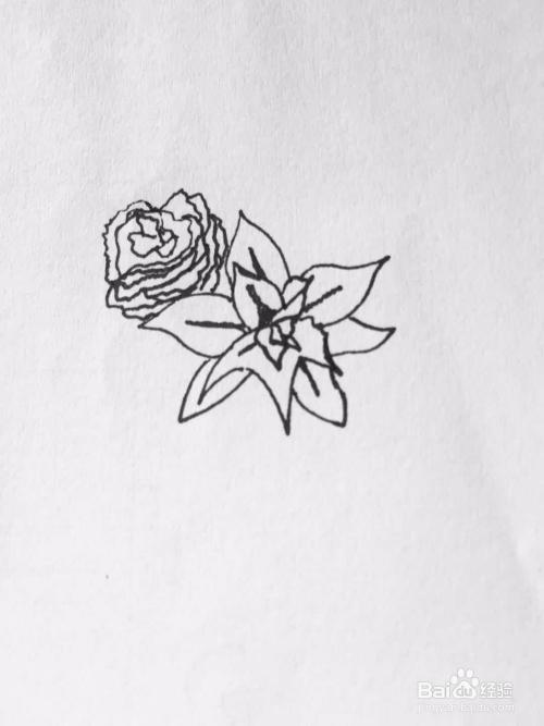 茉莉简笔画之新娘的手捧花