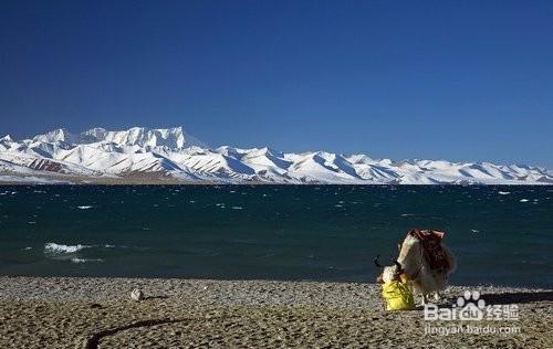 第一次去西藏旅行的注意事项 27个必备基本常识