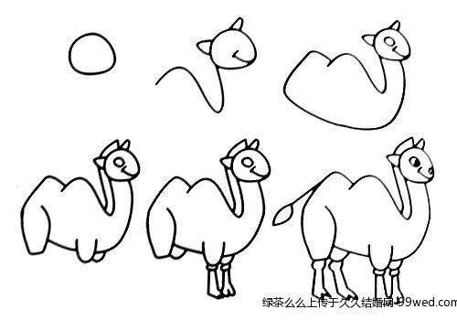 教你一笔一笔画动物简笔画