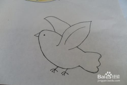 怎么画鸽子 鸽子的简笔画法