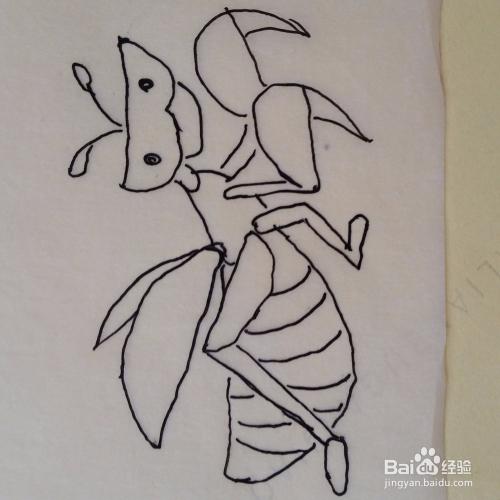 简笔画螳螂怎么画