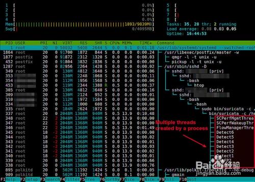 Linux上如何查看某个进程的线程