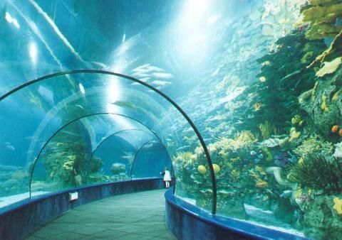 长风公园水族馆门票_上海长风海洋世界游玩攻略-百度经验