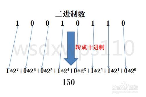 二进制、八进制、十进制、十六进制之间的转换
