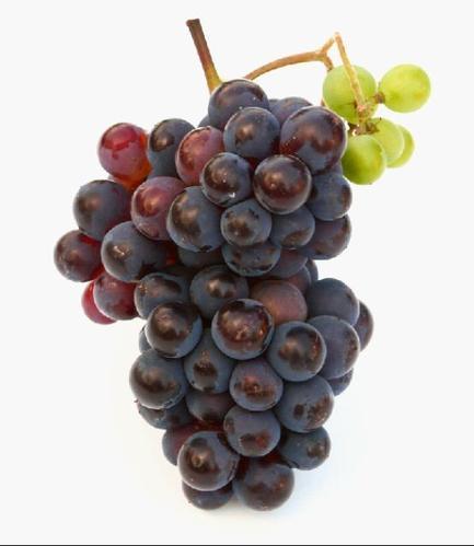 葡萄如何保存的时间长一点
