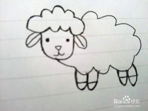 简笔画之小绵羊的画法