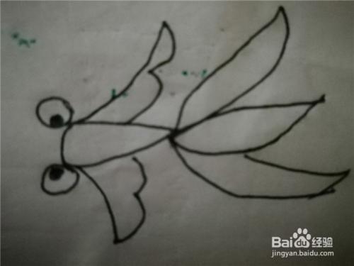 怎么样用简笔画画小金鱼