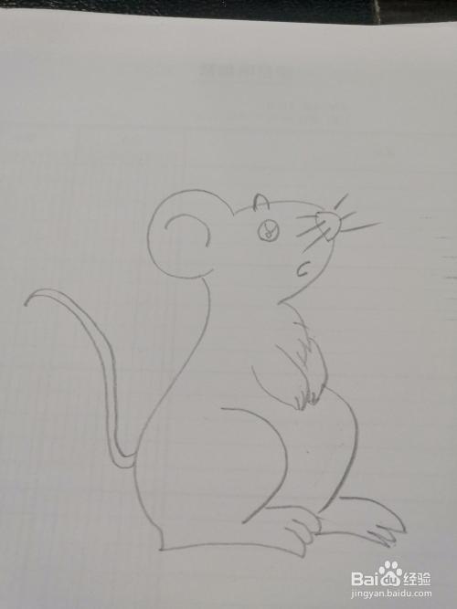 简笔画 如何画小老鼠