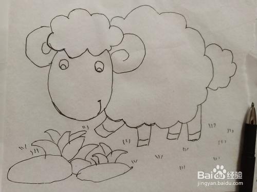 小绵羊的简笔画法怎么画