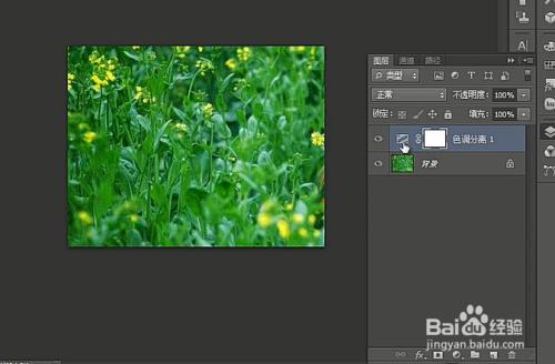 photoshop的色调分离原理_冷色调图片