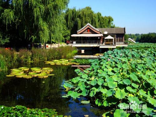北京圆明园遗址公园游览攻略