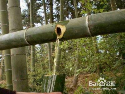 怎么制作优质的竹筒酒