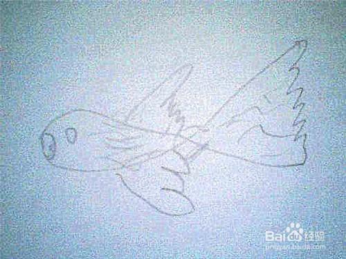 简笔画 鱼的画法