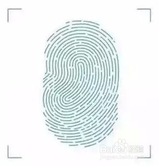 动态指纹识别二维码制作_使用PS制作微信中长按指纹识别二维码的动态图-百度经验