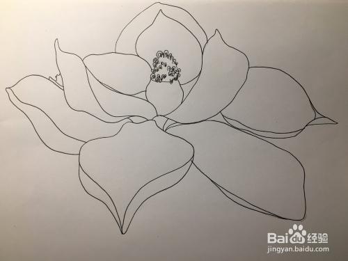教你画一朵简单的花 花朵简笔画 儿童画