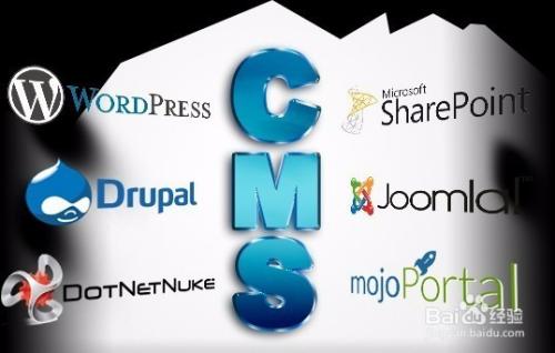 网站建设该如何选择网络公司