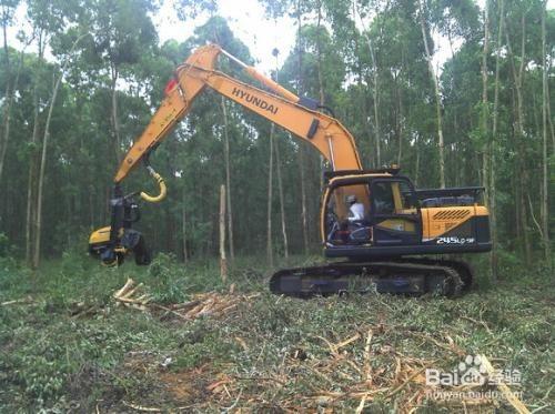 广东新沙港进口二手伐木机操作流程和单证