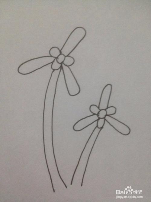 兰花的简笔画