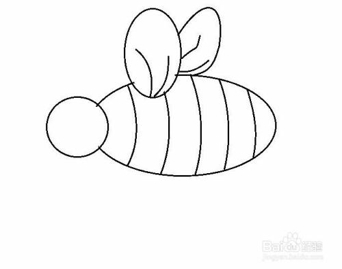 简笔画胖嘟嘟小蜜蜂的画法