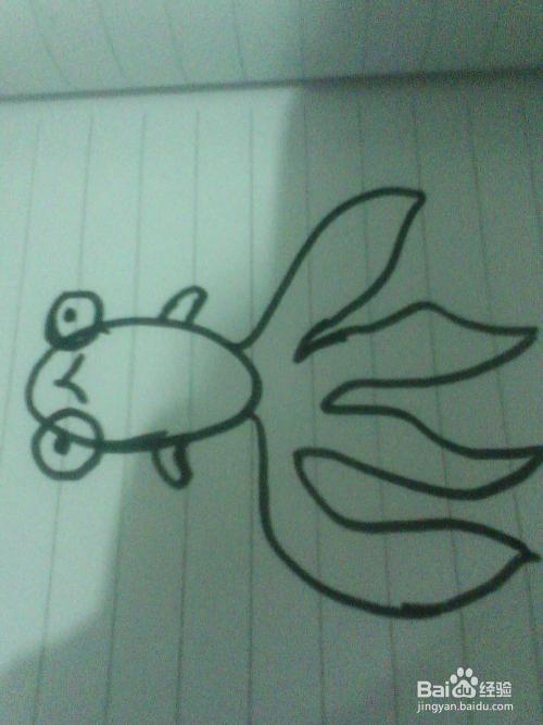 各种鱼的简笔画画法