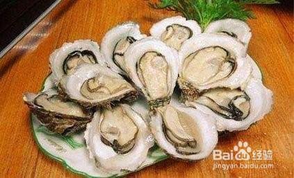 牡蛎的功效和作用