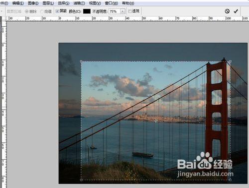 用Photoshop剪裁图片的方法