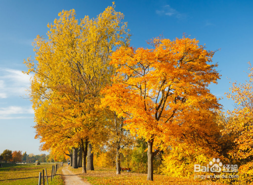 秋天保暖要注意哪些?