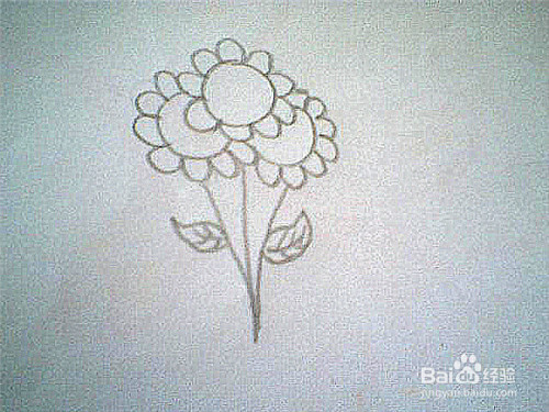 简笔画一束花的画法