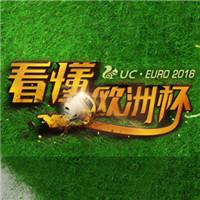 UC欧洲杯,竞猜王争霸