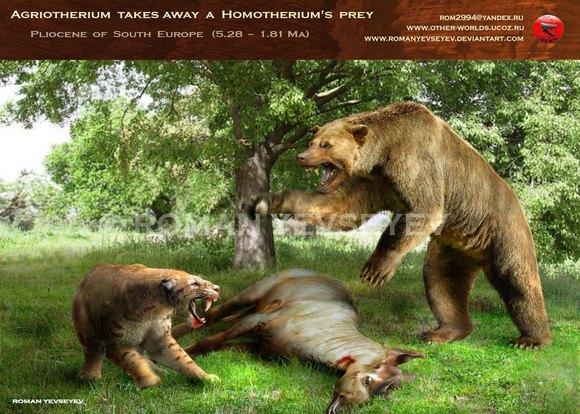 美洲拟狮和剑齿虎_【图片】剑齿王朝——纵横五大洲的锯齿虎【古兽吧】_百度贴吧