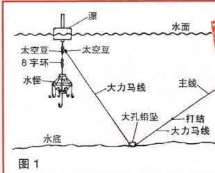 爆炸钩线组图片_【图片】可以用浮钓鲢鳙的线组改一下装爆炸钩吗【钓鱼吧 ...